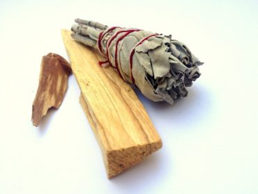 Why Burning Palo Santo Is A BAD Idea