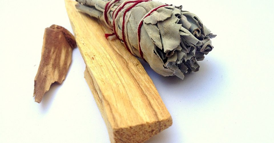 why palo santo is endangered